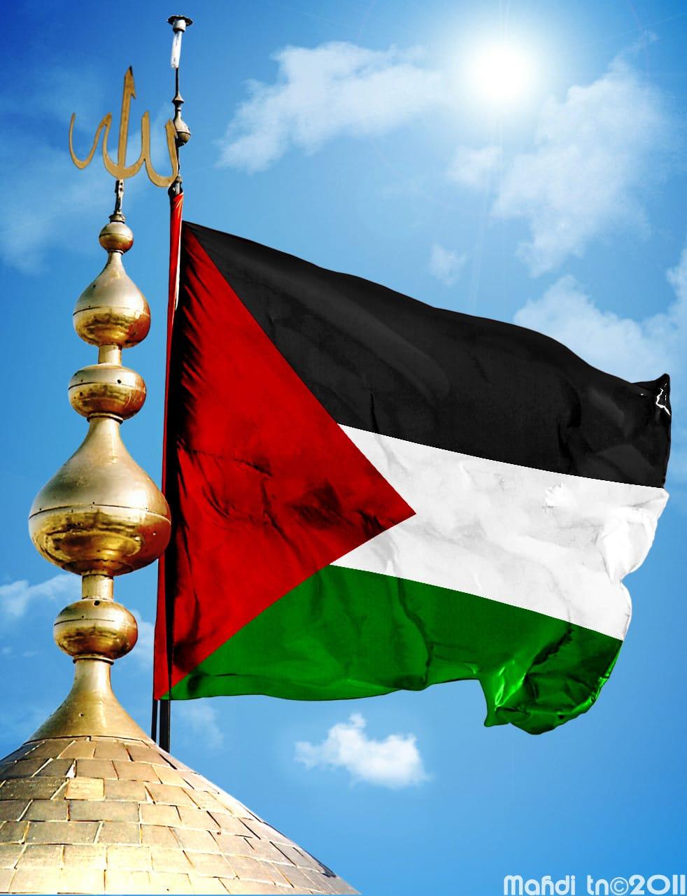 17251f27 ae08 489b 8c11 41765cbecc40 - صور لعلم فلسطين والقدس القديم والجديد